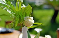 green-white wedding in Bali