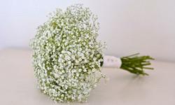 gypsophila-bouquet_edited