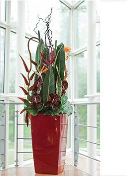 flower arrangement for hotels Bali