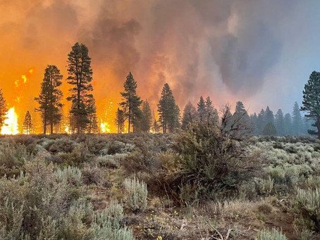 Evacuations as largest US fire burns