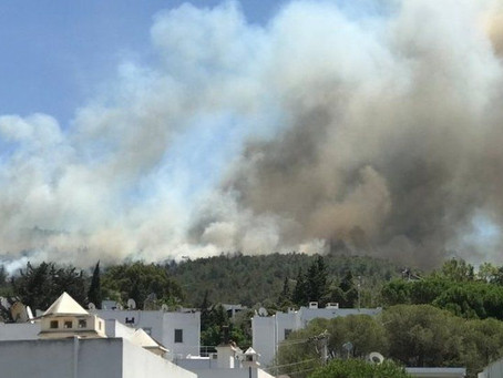 Foreign tourists evacuated as wildfires threaten resorts