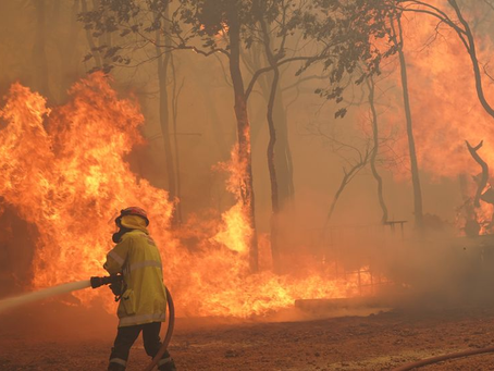 Perth bushfire: Evacuations as dozens of homes destroyed