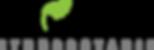 Logo - PNG Datei (RGB) - Schwarz auf tra