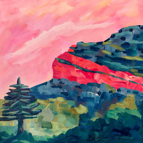Steamboat Mountain Green and Pink