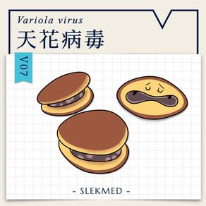 微微生物: V07 天花病毒