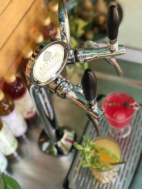 Rent tap station for Kombucha