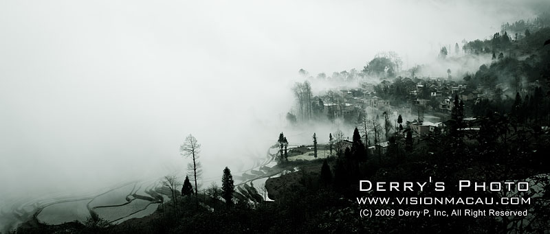 PPD_5922.jpg