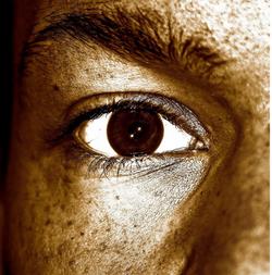 Eye To Eye V
