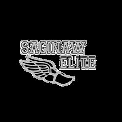Saginaw web.png