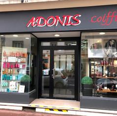 adonis1.jpg
