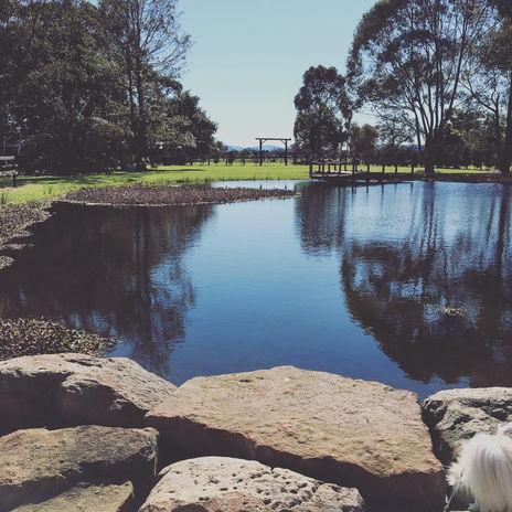Terara Park