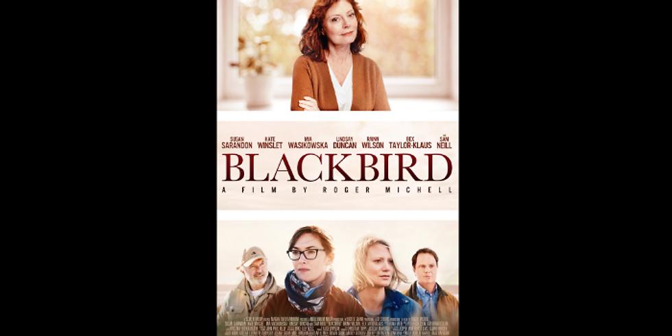 4 PM | BLACKBIRD