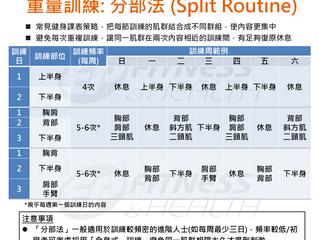 【重量訓練】「分部法」(Split Routine) 的應用技巧