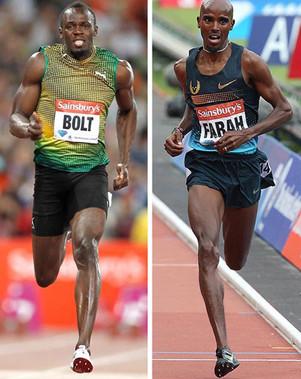 【跑步科學】表現關鍵: 快肌與慢肌