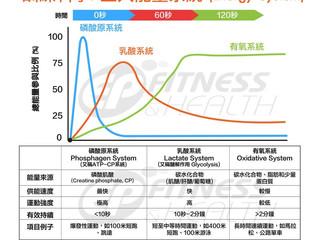 【訓練科學】三大能量系統(Energy System)