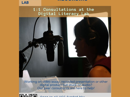 1:1 Focused Consultation Series: Voiceover Recording