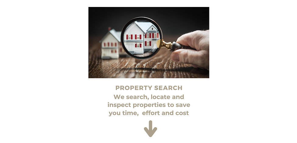 Property search2.png