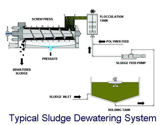 basic sludge dewatering system.jpg
