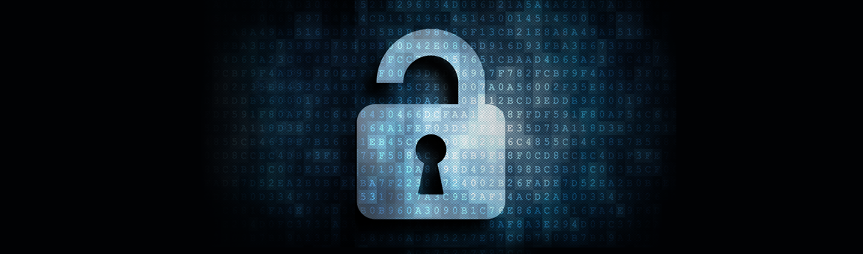 Consultoria en Seguridad de la Información