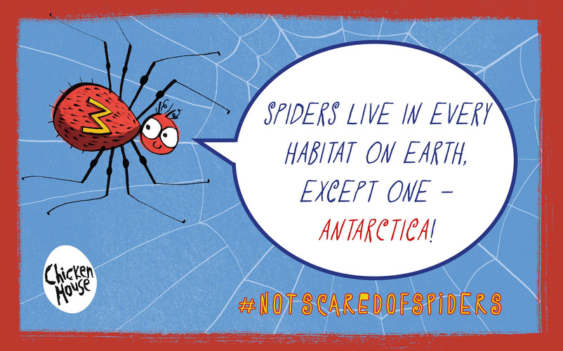 Milton spider fact 5.jpg