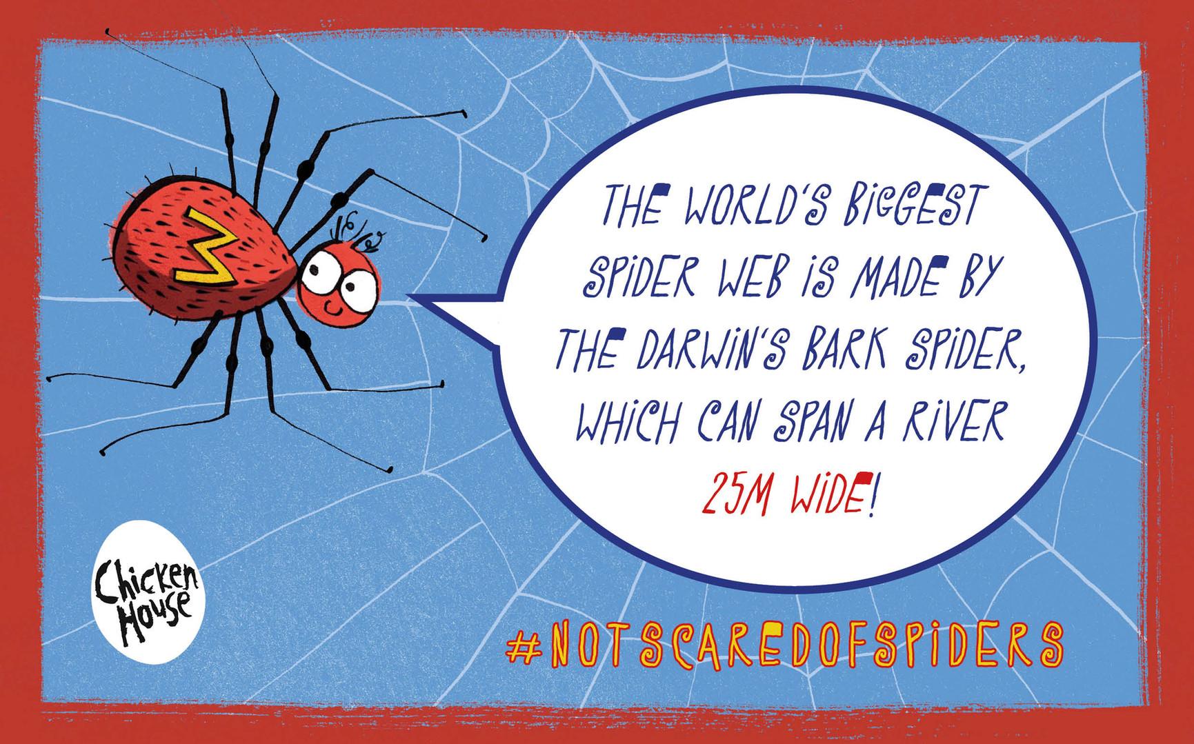 Milton spider fact 2.jpg