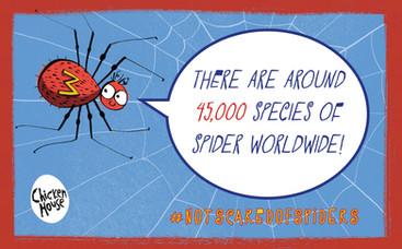 Milton spider fact 3.jpg