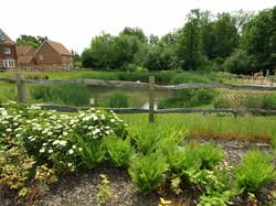 Clayton Mills Pond  Area
