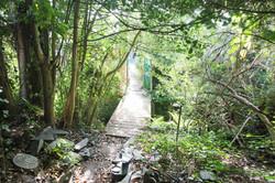 Garden 2 Stream and Bridge