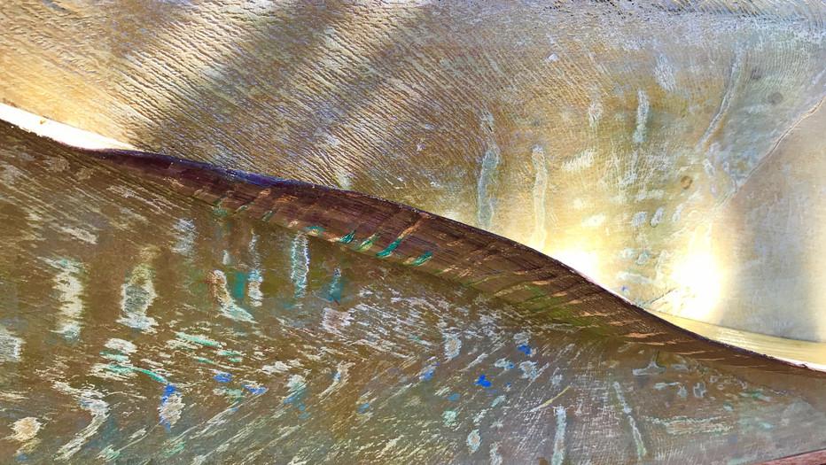 ALOHA SPIRIT detail RayBella_edited.jpg