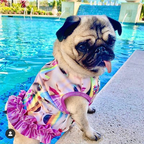 Glamour Girls Swimsuit