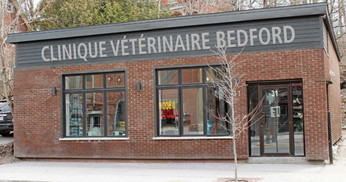 veterinaire-bedford-quebec-local-1.jpg