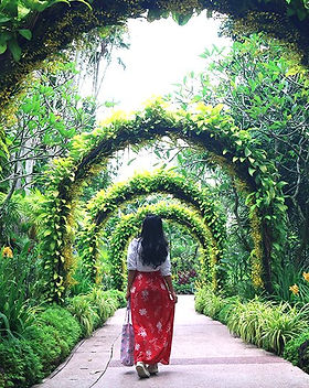 singapore-botanic-gardens-orchid-garden.