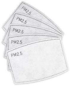 PM2,5Filter.jpg