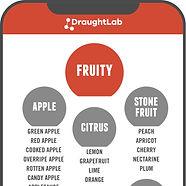 Flavor Map Sensory