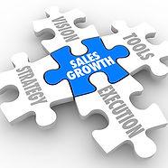 Sales Growth Puzzle Pieces