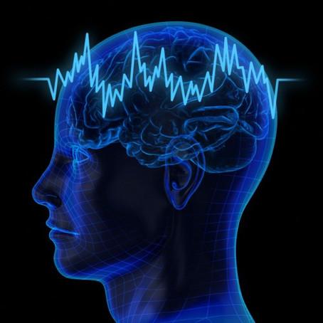 MEK-Visual Memory Testinden Nasıl Tam Puan Alınır?