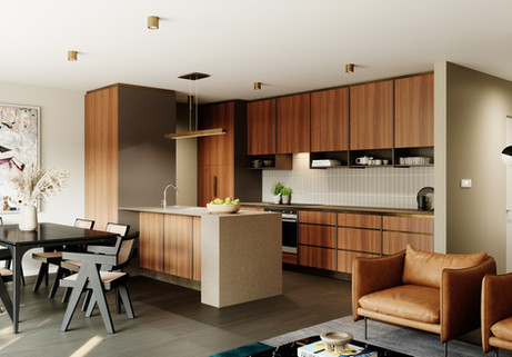 Denman_Townhouse_View02_V03_Leather.jpg