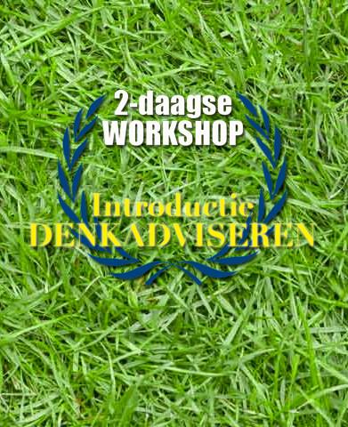 2-daagse-workshop-denkadviseren---IGOP.j
