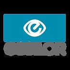 essilor-logo-vector.png