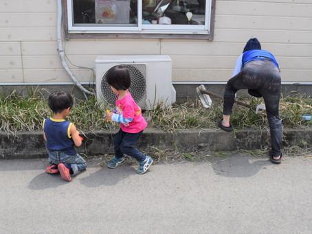 🍃子どもと一緒に草むしり🍃