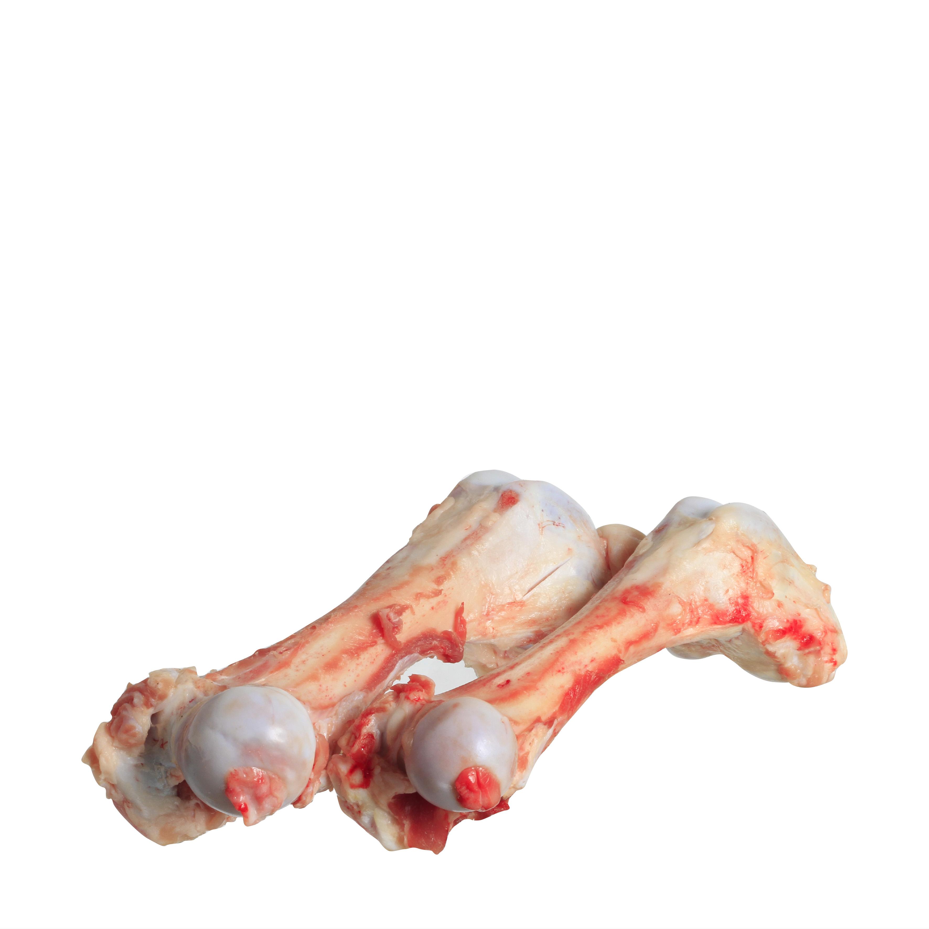 hovězí morková kost