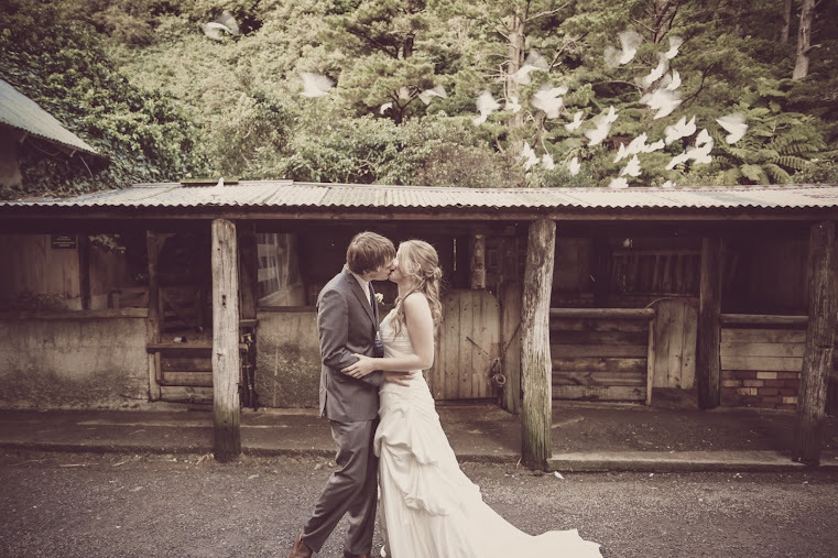 Lovey Dovey Upper Hutt wedding
