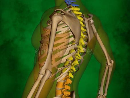 Rolfing® Integração Estrutural* e a saúde da nossa coluna