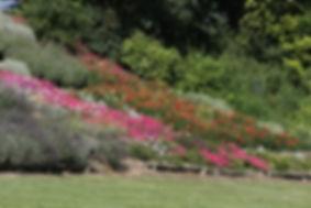 Les jardins fleuris en terrasses du manoir de Vonnes, à visiter