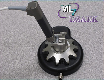 ML7_DSAEK.JPG