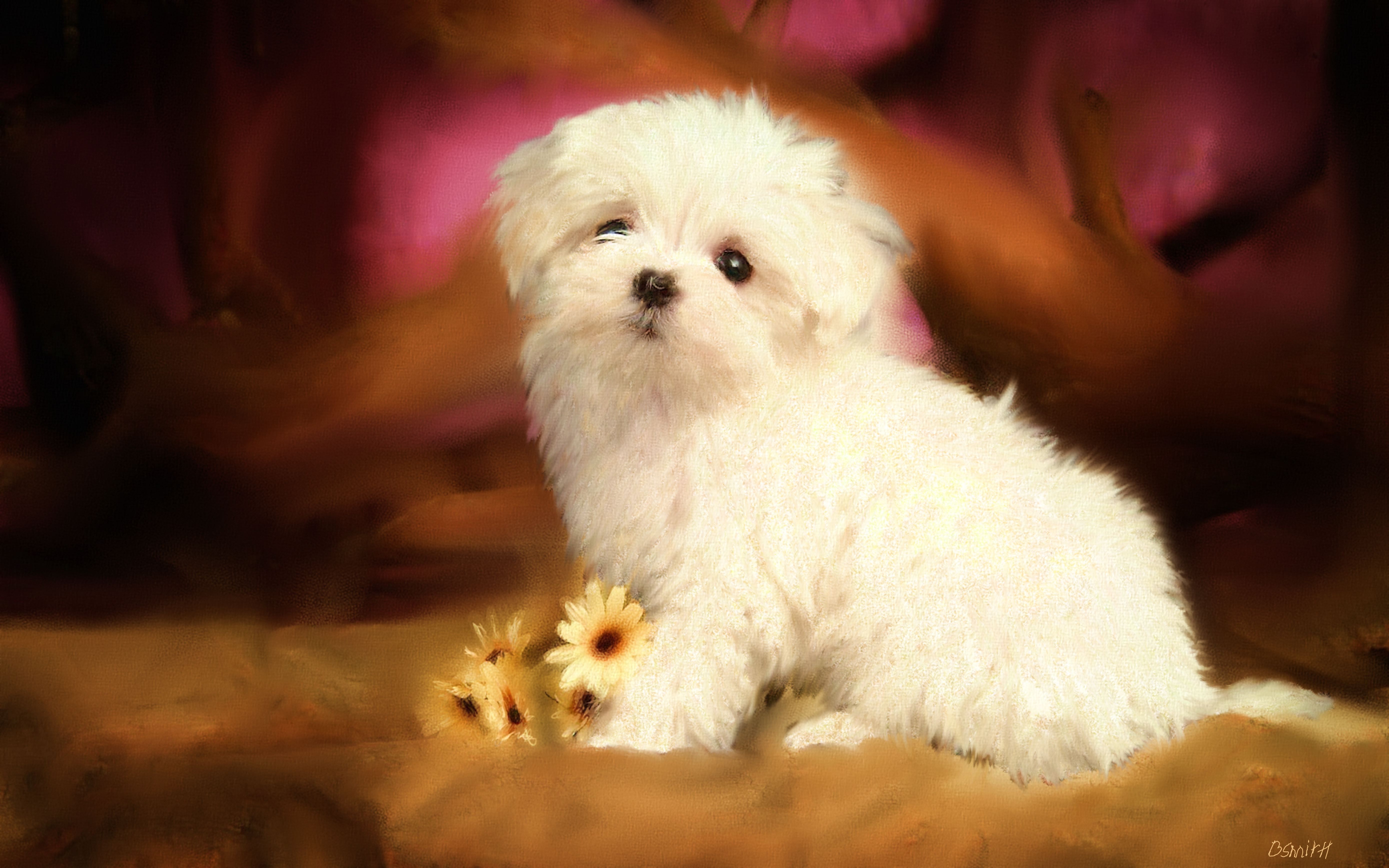 puppy with flowers2