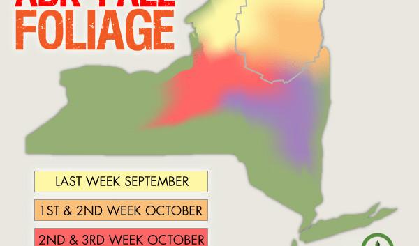 Adirondack foliage map