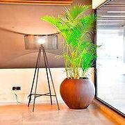 Premium floor planters1.jpg