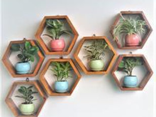 Wooden Hexagon Frame - Set of 3