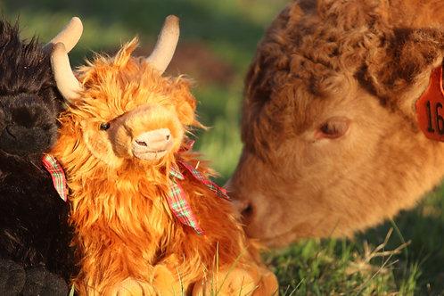 Large red Highland Cow Plush